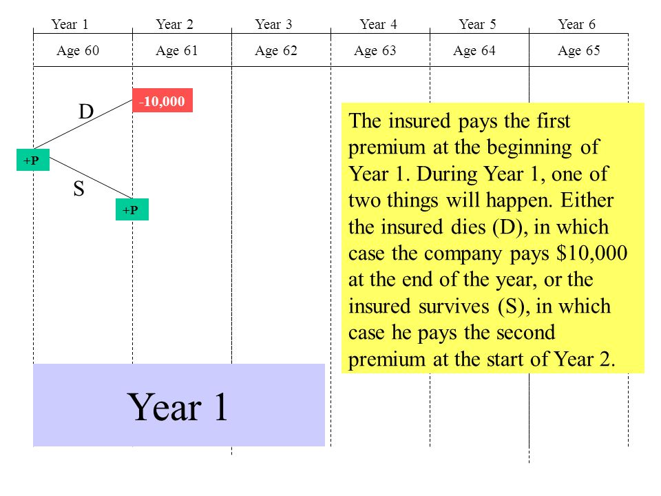 Year 1Year 2Year 3Year 4Year 5 Age 60Age 61Age 62Age 63Age 64 Year 6 Age 65 -10,000 +P D S Year 1 The insured pays the first premium at the beginning