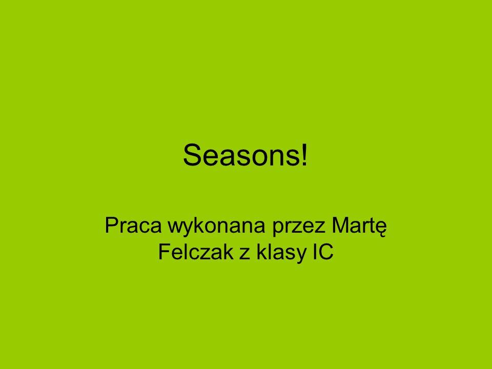 Seasons! Praca wykonana przez Martę Felczak z klasy IC
