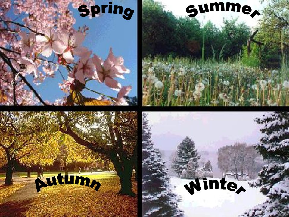 Spring is one of the four seasons.Spring marks the transition from winter into summer.