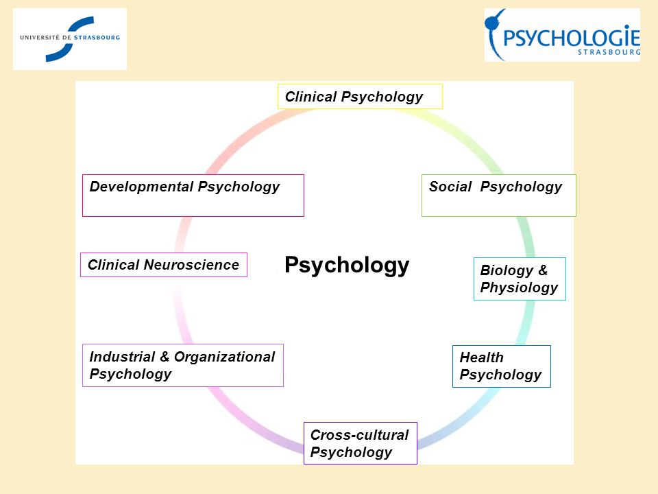 Clinical Neuroscience Biology & Physiology Cross-cultural Psychology Industrial & Organizational Psychology Psychology Developmental Psychology Clinic