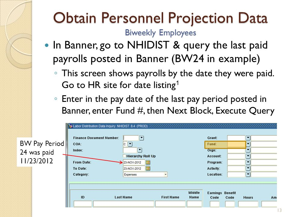 After the data populates, you can either query within the NHIDIST screen, or export to excel.