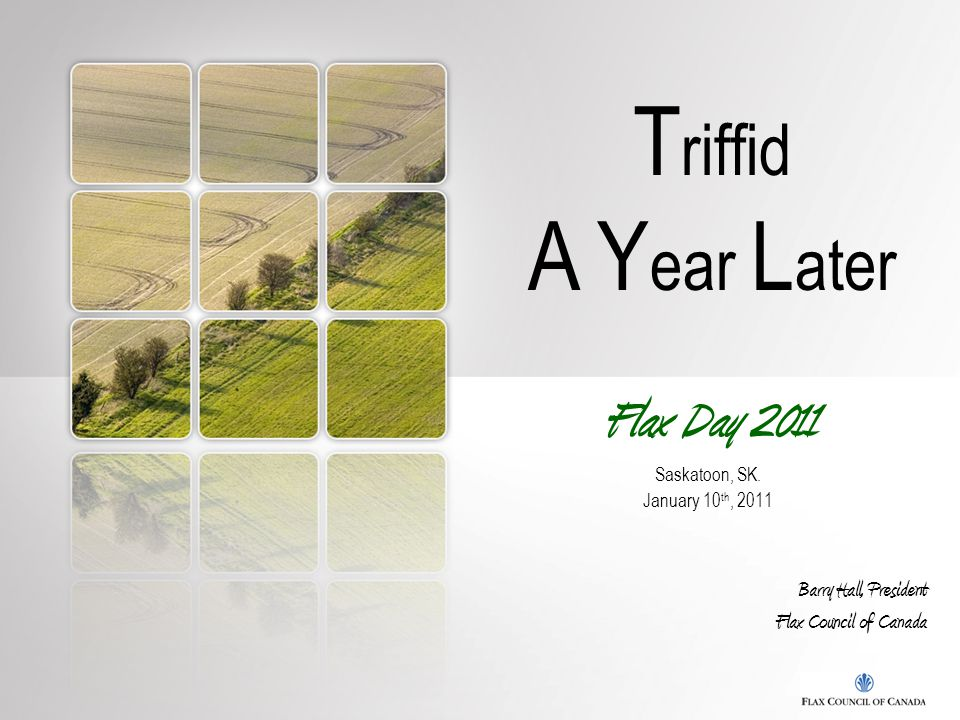 T riffid A Y ear L ater Flax Day 2011 Saskatoon, SK. January 10 th, 2011 Barry Hall, President Flax Council of Canada