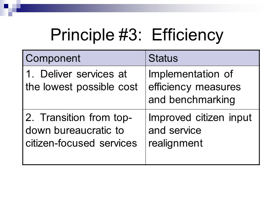 Principle #3: Efficiency ComponentStatus 1. Deliver services at the lowest possible cost Implementation of efficiency measures and benchmarking 2. Tra