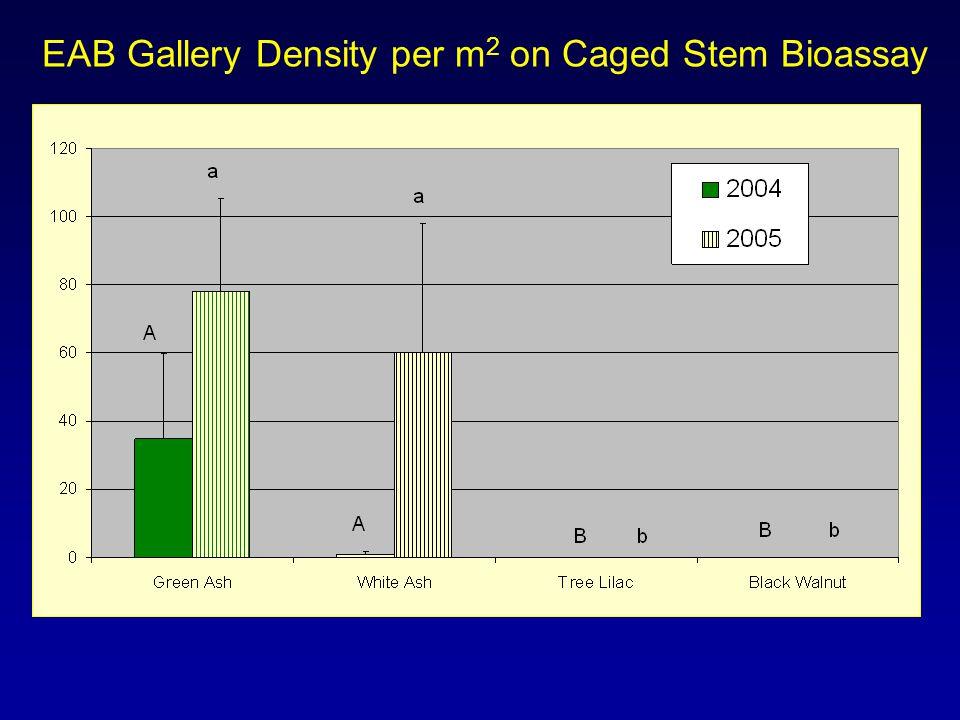 EAB Gallery Density per m 2 on Caged Stem Bioassay