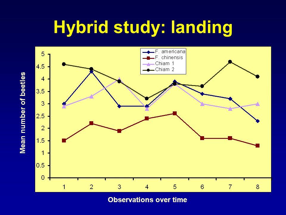 Hybrid study: landing Observations over time Mean number of beetles