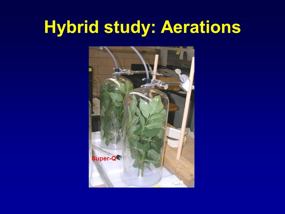 Hybrid study: Aerations Super-Q