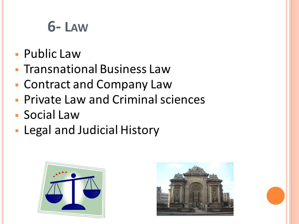 6- L AW Public Law Transnational Business Law Contract and Company Law Private Law and Criminal sciences Social Law Legal and Judicial History 13