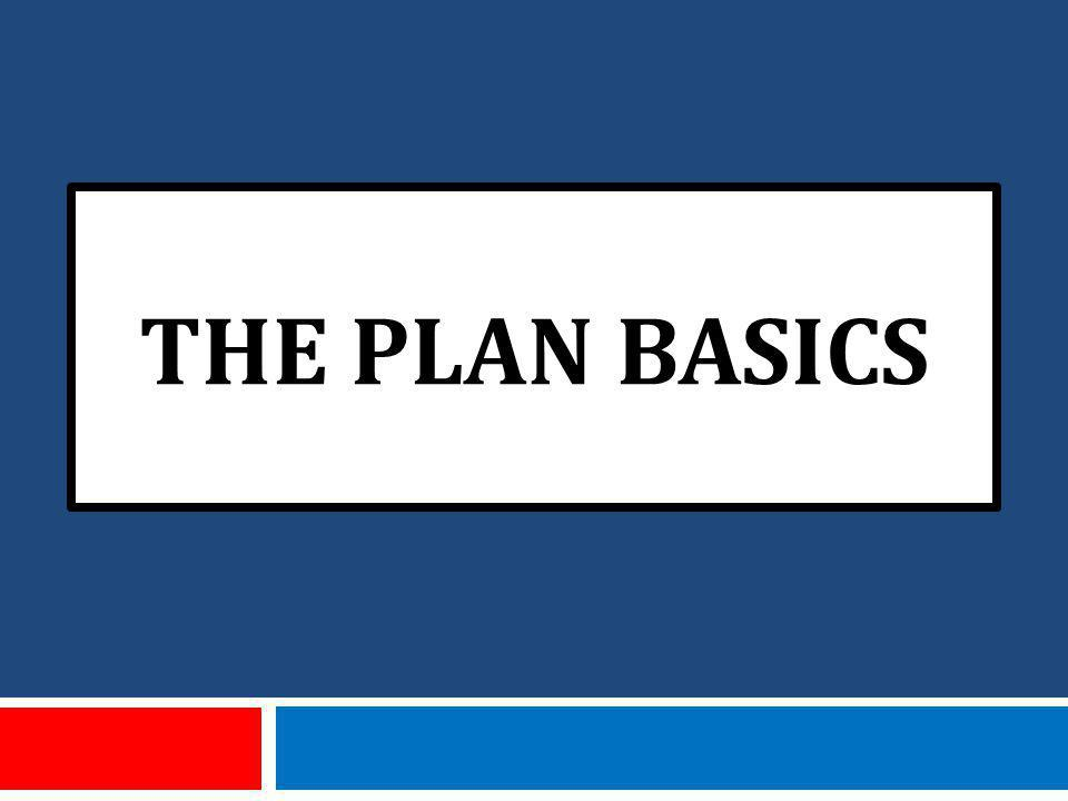 THE PLAN BASICS