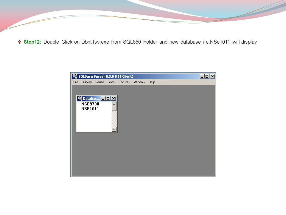 Step12: Double Click on Dbnt1sv.exe from SQL850 Folder and new database i.e.NSe1011 will display