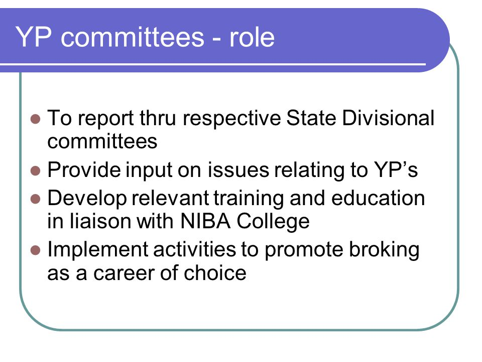 YP committees - role To report thru respective State Divisional committees Provide input on issues relating to YPs Develop relevant training and educa