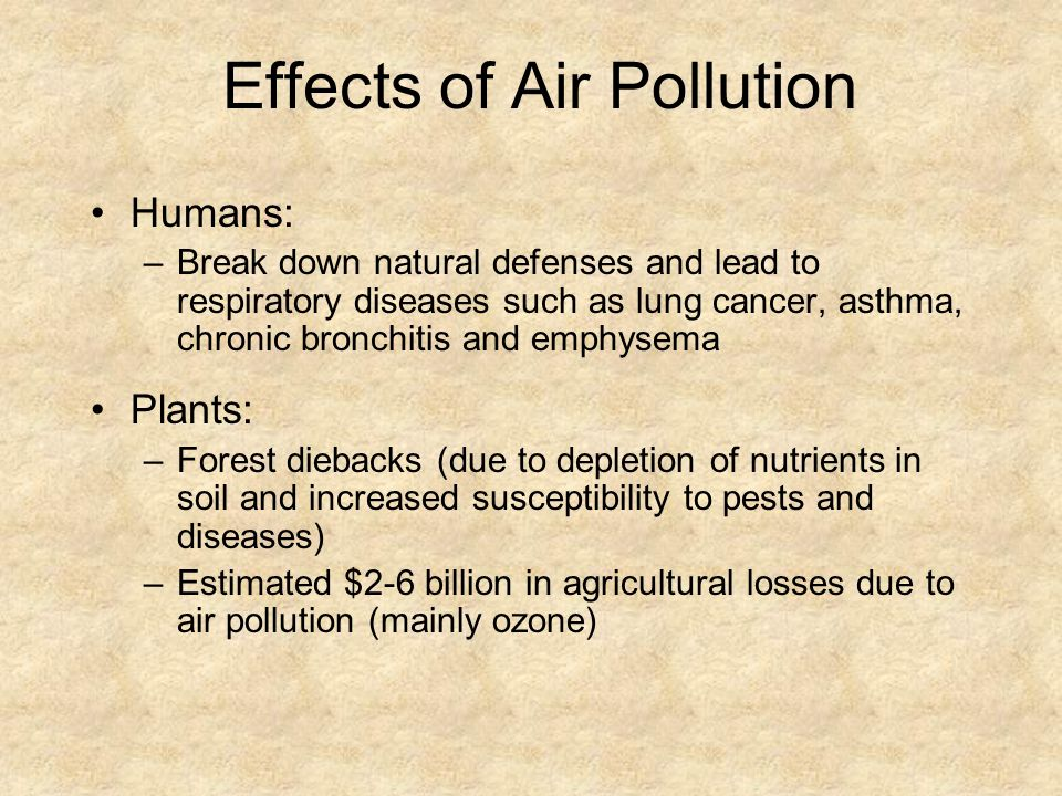 Effects of Air Pollution Humans: –Break down natural defenses and lead to respiratory diseases such as lung cancer, asthma, chronic bronchitis and emp
