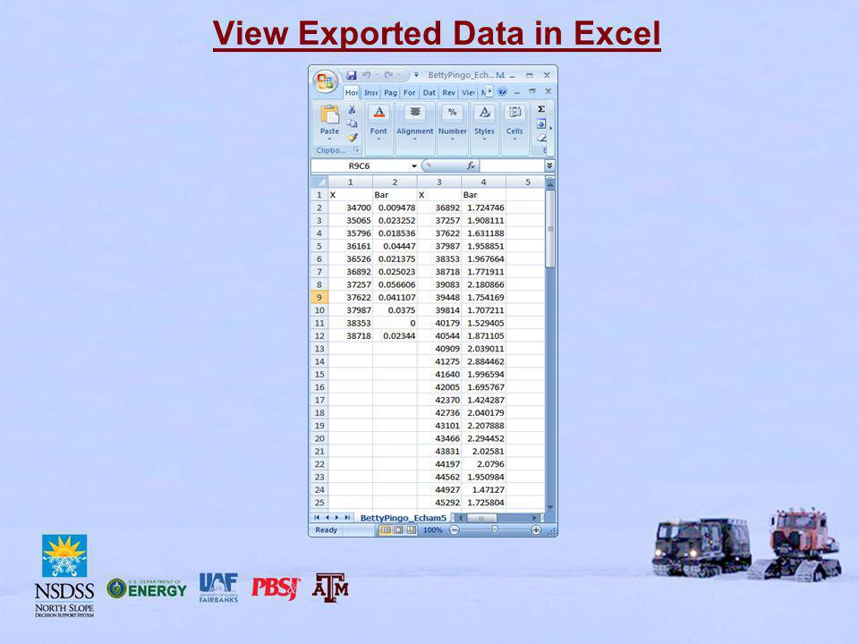 View Exported Data in Excel