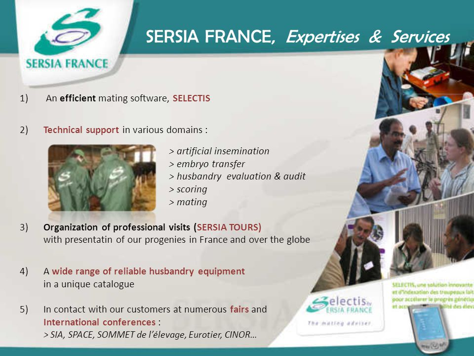 SERSIA FRANCE, Expertises & Services 1) An efficient mating software, SELECTIS 2)Technical support in various domains : > artificial insemination > em