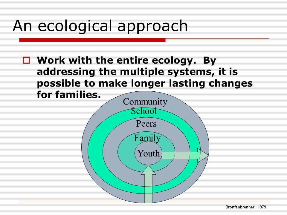 Community School Peers Family An ecological approach Work with the entire ecology. By addressing the multiple systems, it is possible to make longer l
