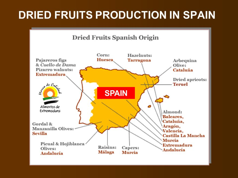 DRIED FRUITS PRODUCTION IN SPAIN SPAIN