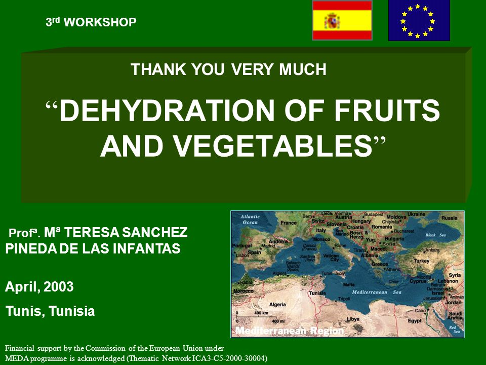 DEHYDRATION OF FRUITS AND VEGETABLES 3 rd WORKSHOP April, 2003 Tunis, Tunisia Financial support by the Commission of the European Union under MEDA programme is acknowledged (Thematic Network ICA3-C5-2000-30004) Profª.
