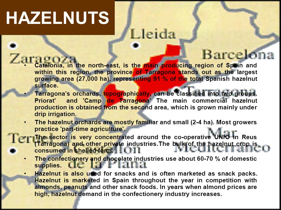 Catalonia, in the north-east, is the main producing region of Spain and within this region, the province of Tarragona stands out as the largest growing area (27,000 ha), representing 91 % of the total Spanish hazelnut surface.
