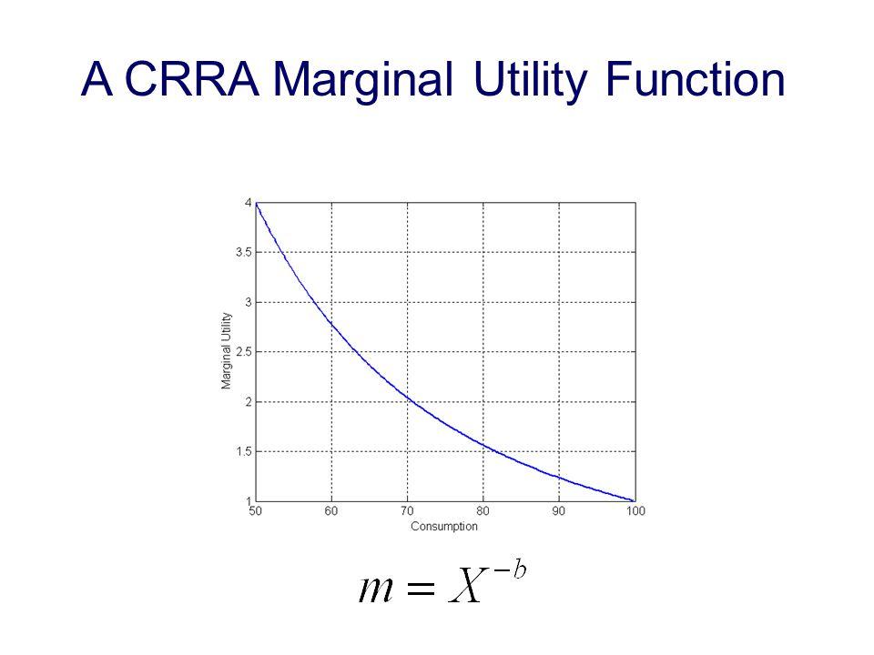 A CRRA Marginal Utility Function