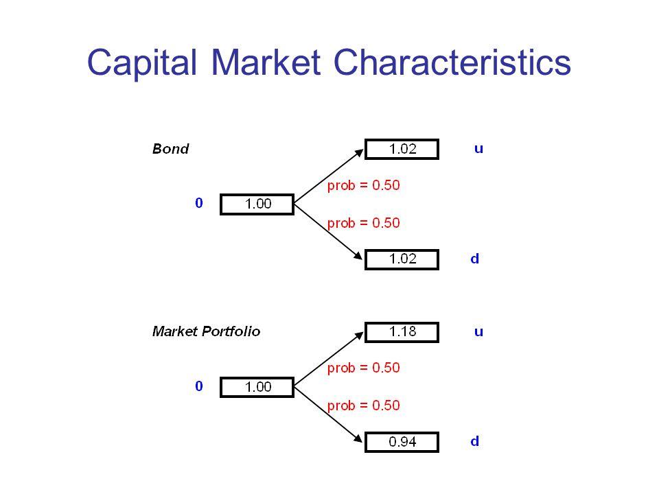 Capital Market Characteristics