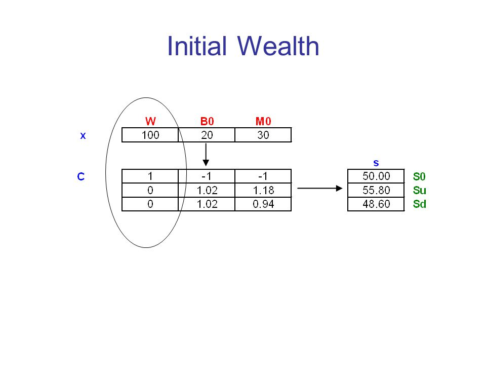 Initial Wealth