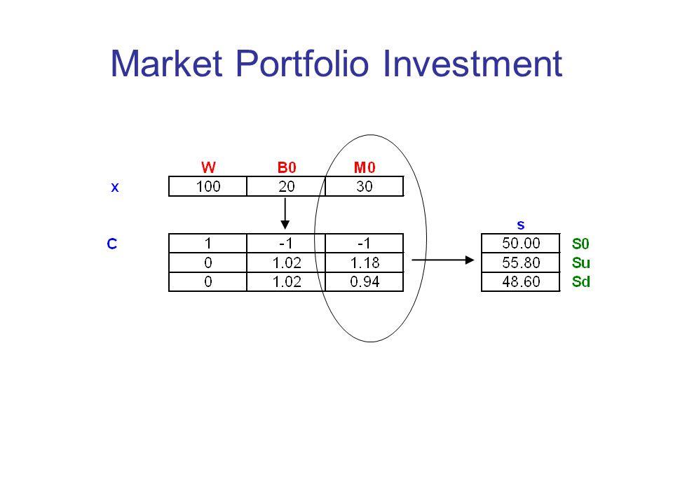Market Portfolio Investment