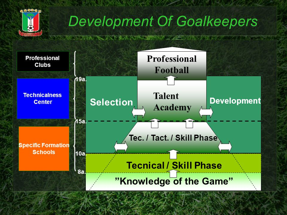 Development Of Goalkeepers Knowledge of the Game Selection Development Tec. / Tact. / Skill Phase Technicalness Center Specific Formation Schools 8a.
