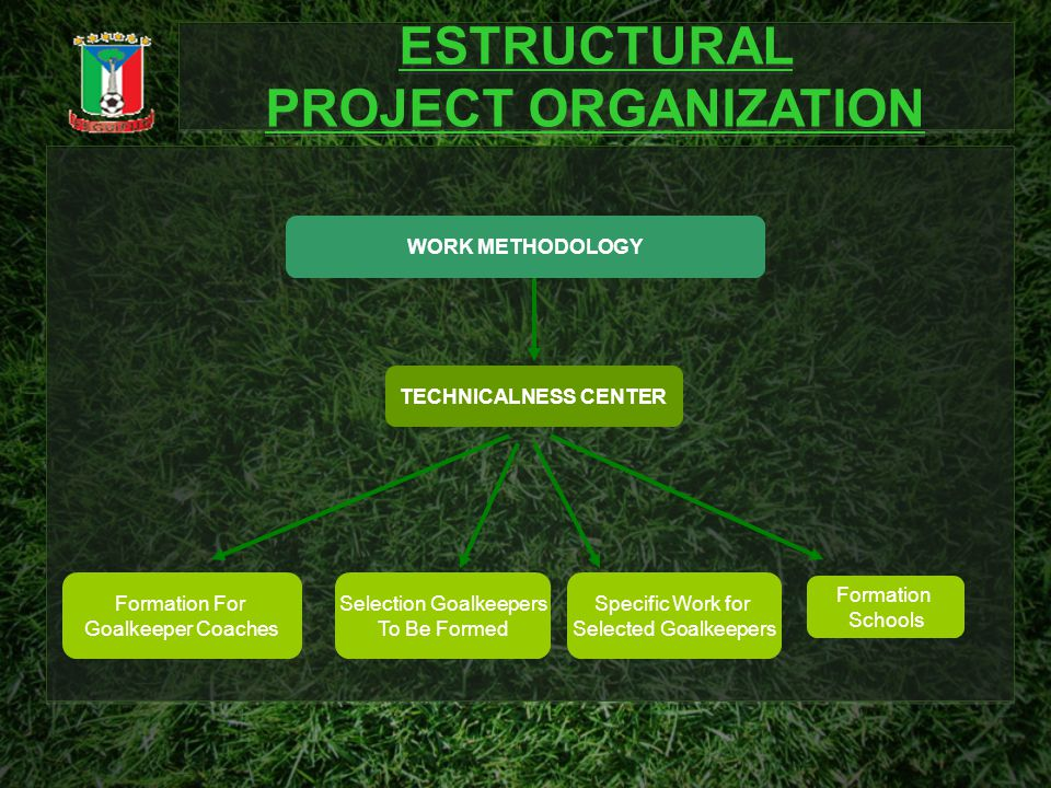 ESTRUCTURAL PROJECT ORGANIZATION ESTRUCTURAL PROJECT ORGANIZATION TECHNICALNESS CENTER Selection Goalkeepers To Be Formed Formation Schools Formation