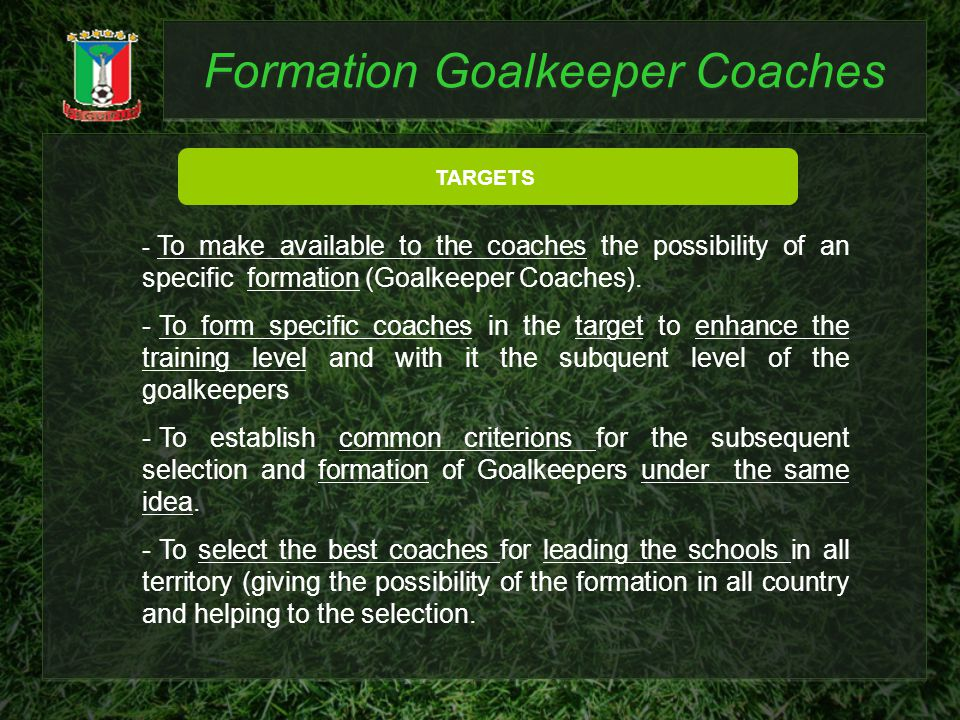 Formation Goalkeeper Coaches TARGETS - To make available to the coaches the possibility of an specific formation (Goalkeeper Coaches). - To form speci