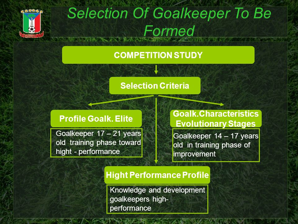 Selection Of Goalkeeper To Be Formed COMPETITION STUDY Selection Criteria Profile Goalk. Elite Goalk.Characteristics Evolutionary Stages Goalkeeper 14