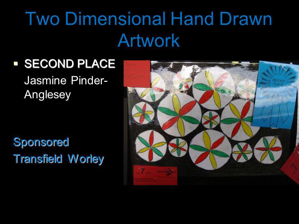 Two Dimensional Hand Drawn Artwork SECOND PLACE SECOND PLACE Jasmine Pinder- AngleseySponsored Transfield Worley