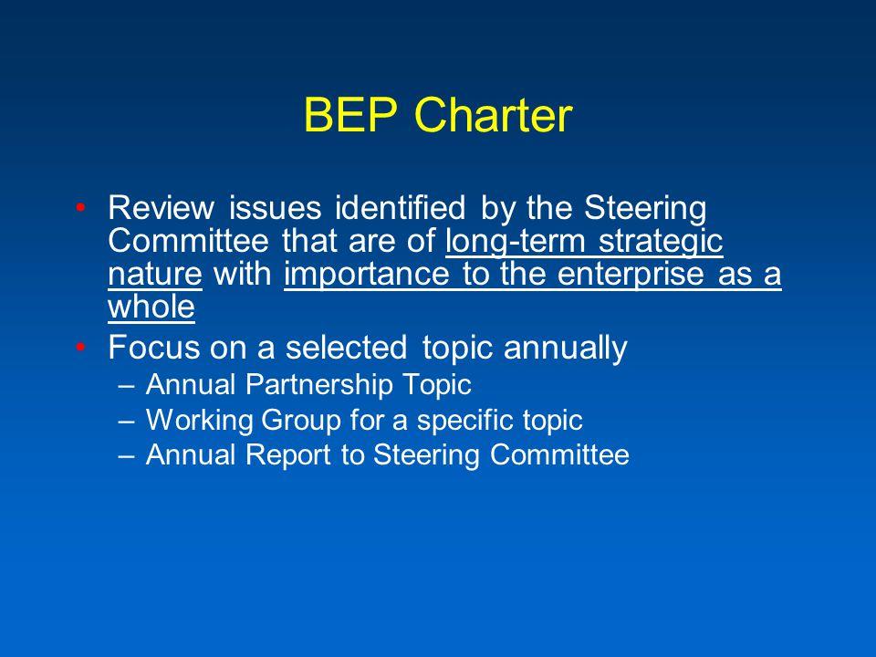 BEP Charter Review issues identified by the Steering Committee that are of long-term strategic nature with importance to the enterprise as a whole Focus on a selected topic annually –Annual Partnership Topic –Working Group for a specific topic –Annual Report to Steering Committee