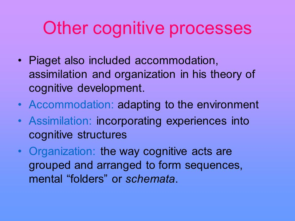 Other cognitive processes Piaget also included accommodation, assimilation and organization in his theory of cognitive development. Accommodation: ada