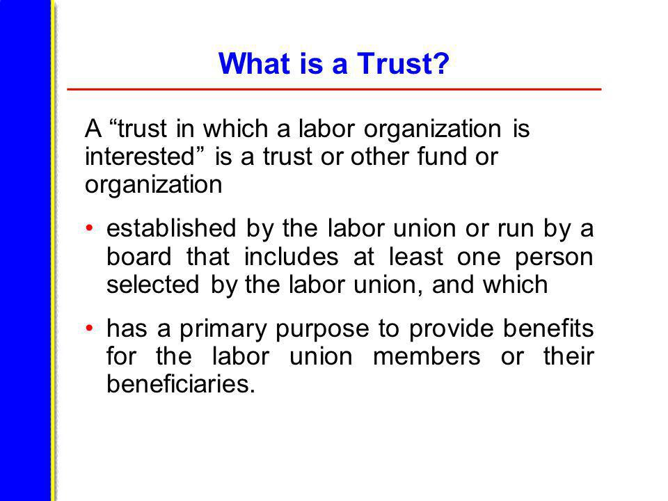 Examples of Entities That May be Trusts A building corporation A redevelopment corporation An educational institute A credit union A labor union – employer joint fund A job targeting fund