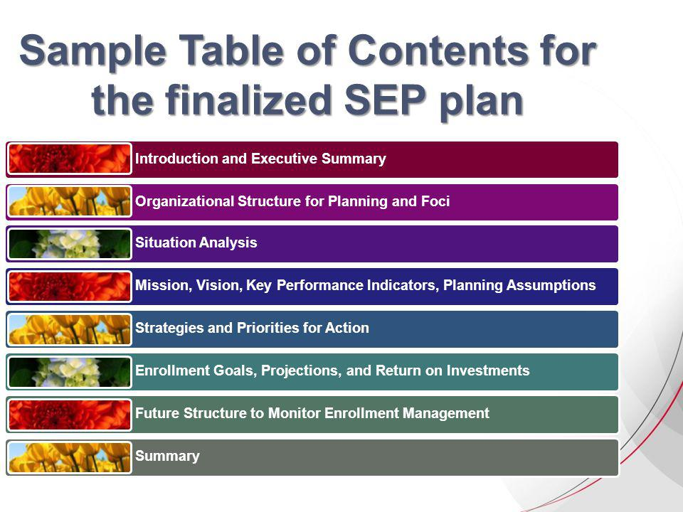Sample Table of Contents for the finalized SEP plan Introduction and Executive Summary Organizational Structure for Planning and Foci Situation Analysis Mission, Vision, Key Performance Indicators, Planning Assumptions Strategies and Priorities for Action Enrollment Goals, Projections, and Return on Investments Future Structure to Monitor Enrollment Management Summary