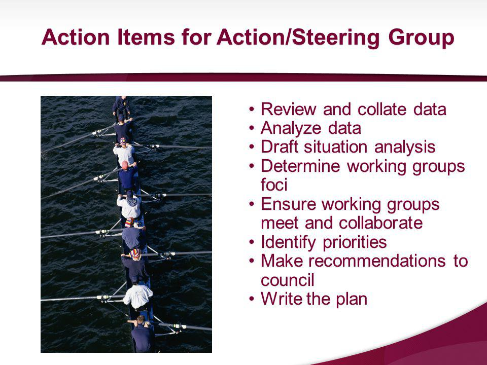 Review and collate dataReview and collate data Analyze dataAnalyze data Draft situation analysisDraft situation analysis Determine working groups fociDetermine working groups foci Ensure working groups meet and collaborateEnsure working groups meet and collaborate Identify prioritiesIdentify priorities Make recommendations to councilMake recommendations to council Write the planWrite the plan Action Items for Action/Steering Group