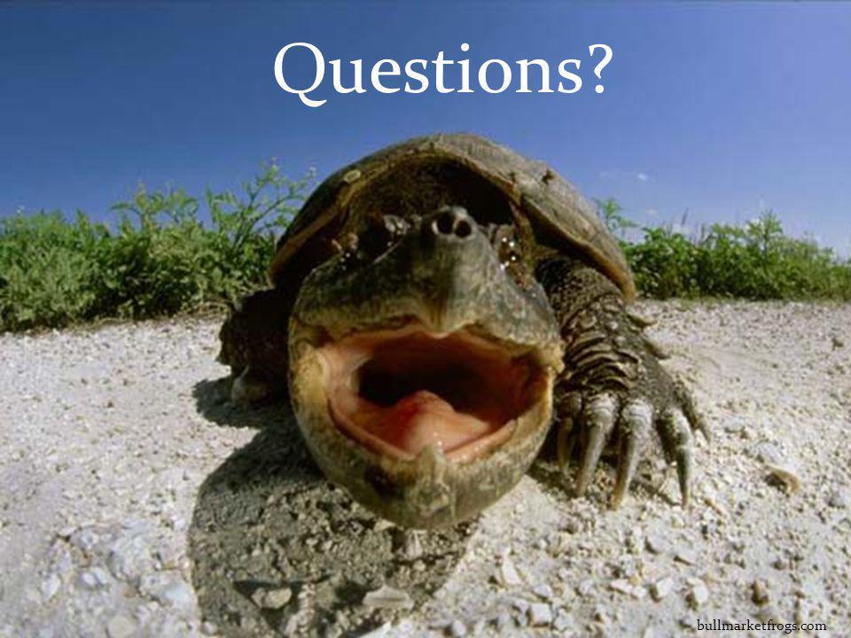 bullmarketfrogs.com Questions?