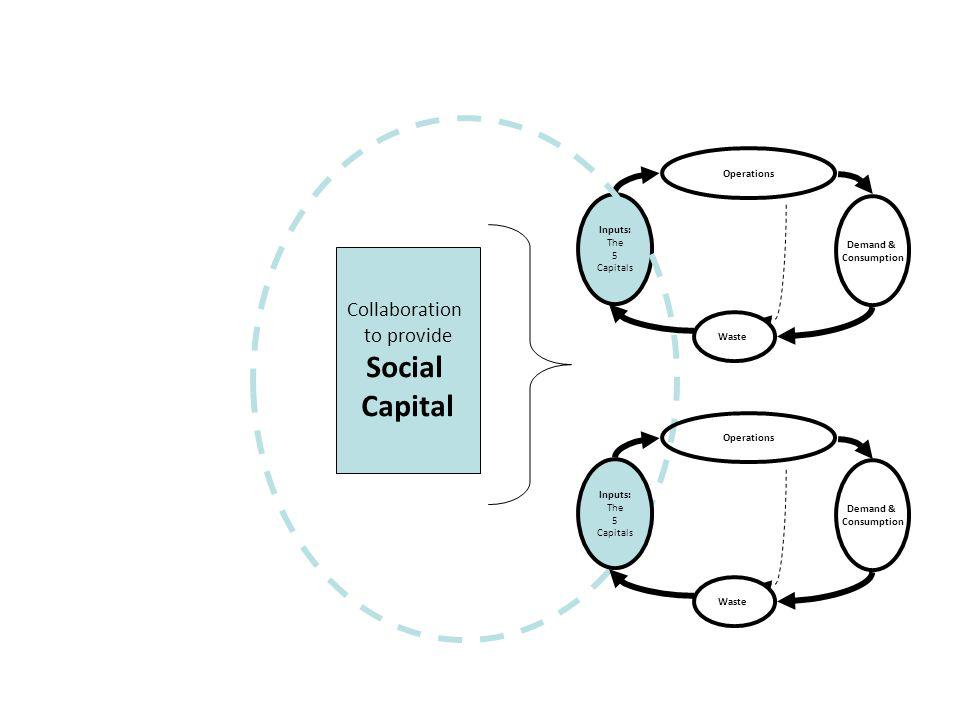 Operations Inputs: The 5 Capitals Waste Demand & Consumption Collaboration to provide Social Capital Operations Inputs: The 5 Capitals Waste Demand & Consumption