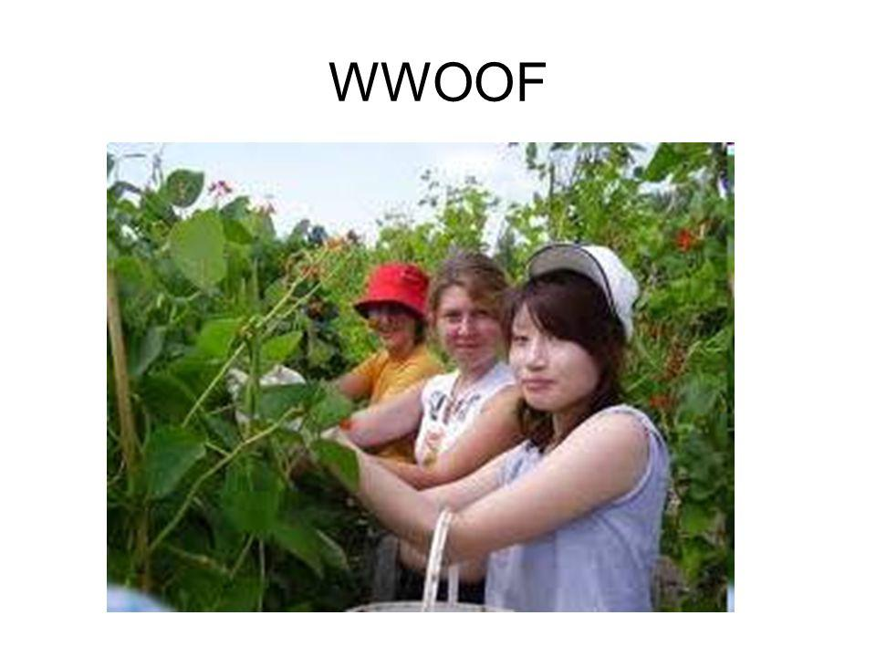 WWOOF