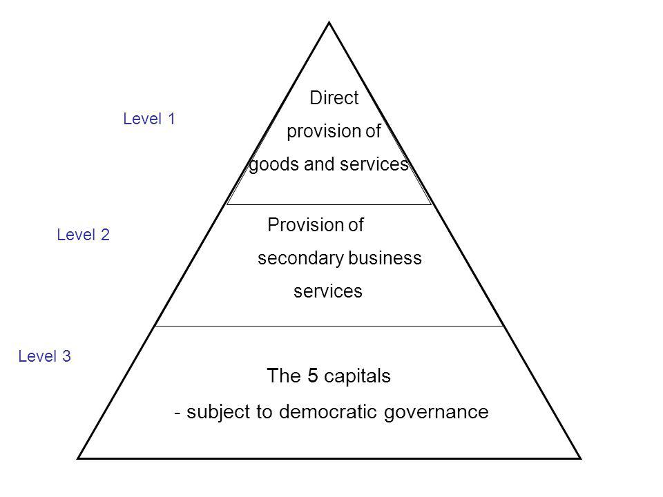 Level 1 Level 2 Level 3 Direct provision of goods and services Provision of secondary business services The 5 capitals - subject to democratic governance