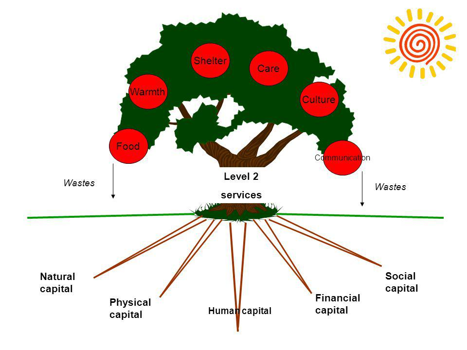 Human capital Natural capital Physical capital Social capital Financial capital Level 2 services Food Warmth Shelter Care Culture Communication Wastes
