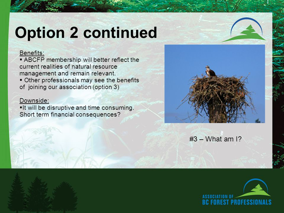 Option 2 continued Benefits: ABCFP membership will better reflect the current realities of natural resource management and remain relevant.