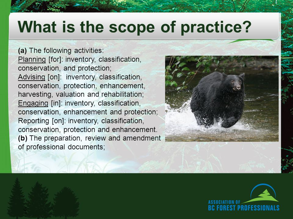 What is the scope of practice.