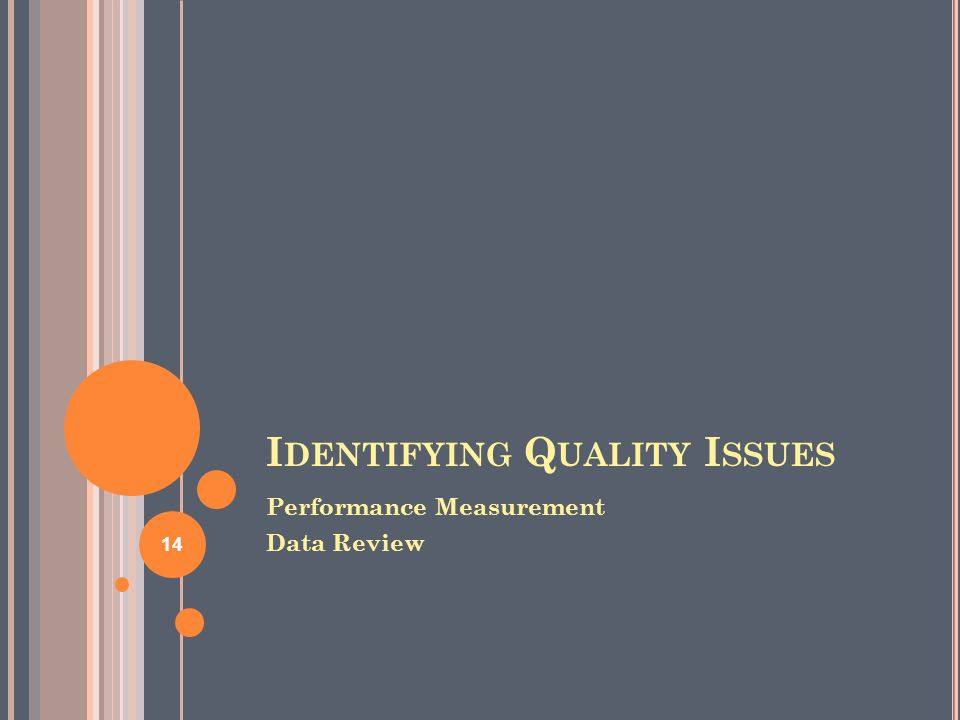 I DENTIFYING Q UALITY I SSUES Performance Measurement Data Review 14