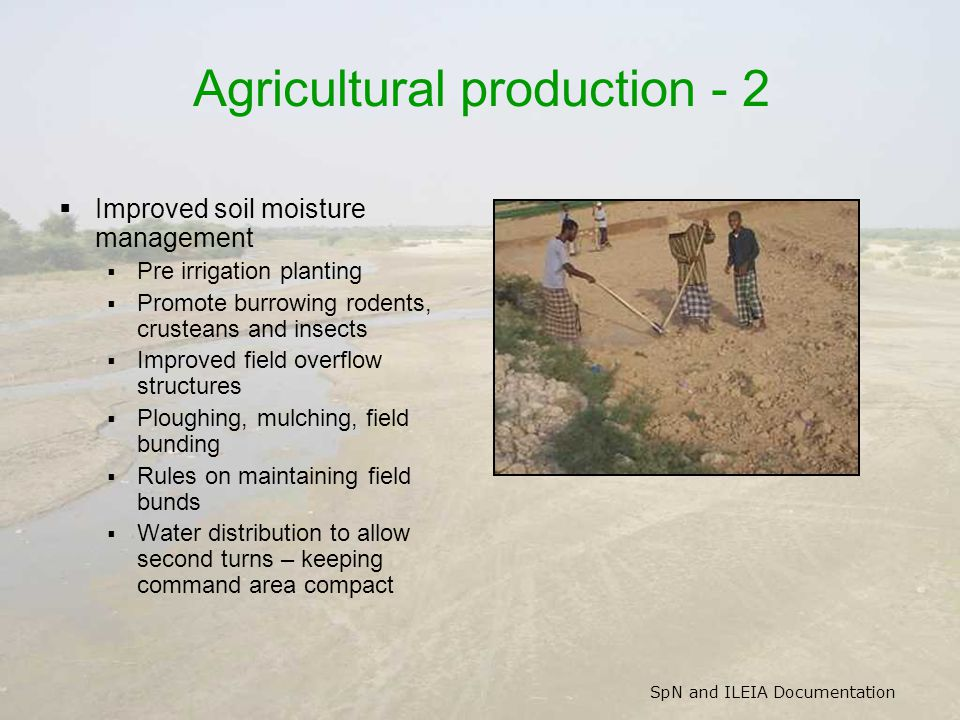 SpN and ILEIA Documentation Agricultural production - 2 Improved soil moisture management Pre irrigation planting Promote burrowing rodents, crusteans