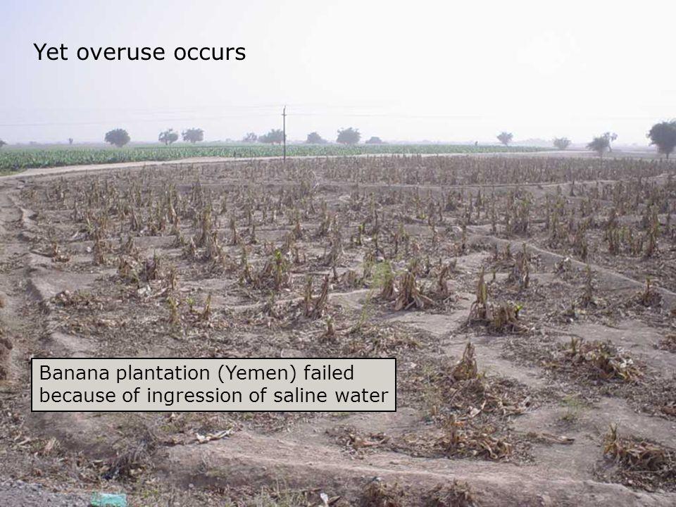 SpN and ILEIA Documentation Banana plantation (Yemen) failed because of ingression of saline water Yet overuse occurs