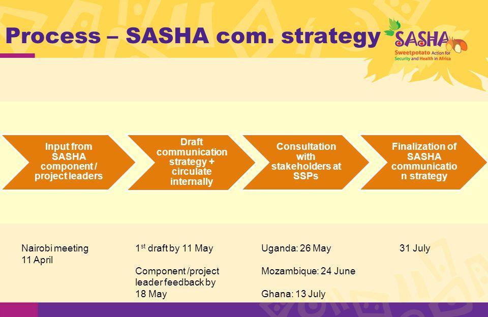 Process – SASHA com.