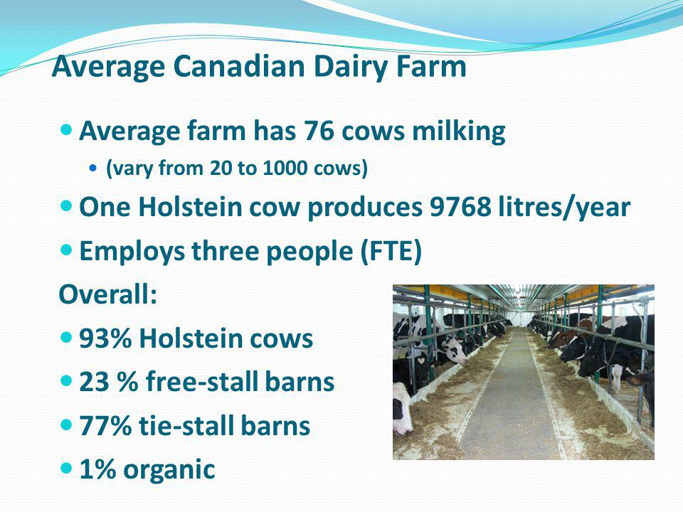 Average Canadian Dairy Farm Average farm has 76 cows milking (vary from 20 to 1000 cows) One Holstein cow produces 9768 litres/year Employs three people (FTE) Overall: 93% Holstein cows 23 % free-stall barns 77% tie-stall barns 1% organic