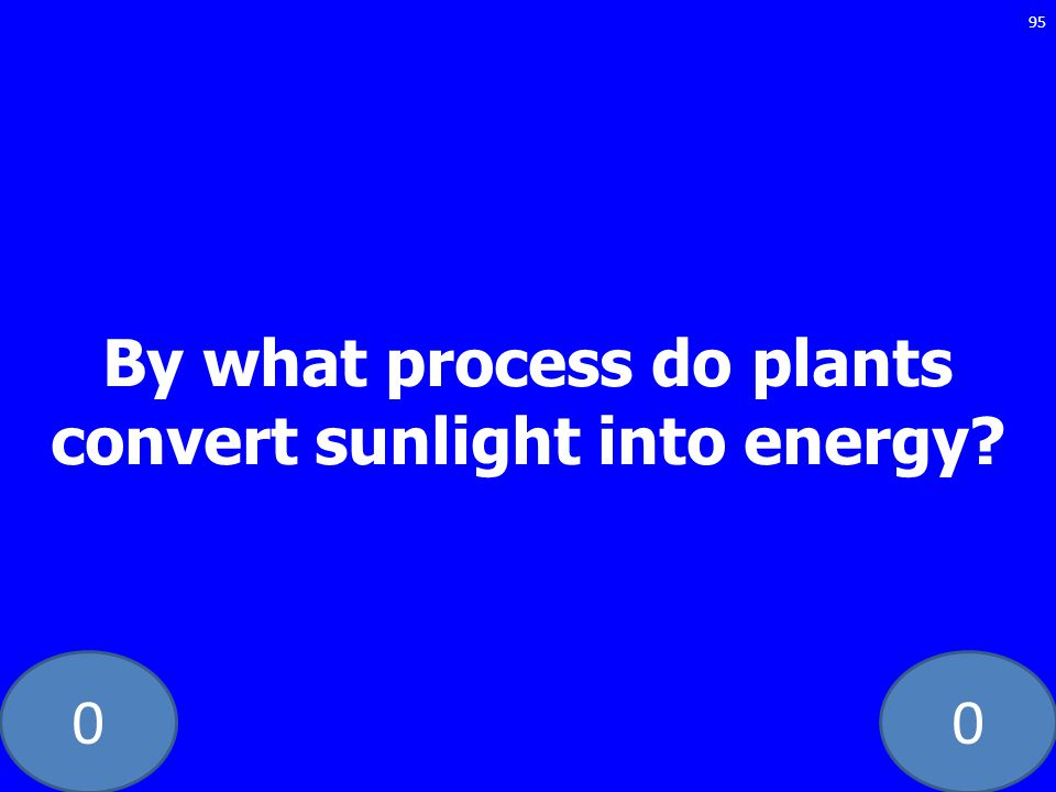00 By what process do plants convert sunlight into energy? 95