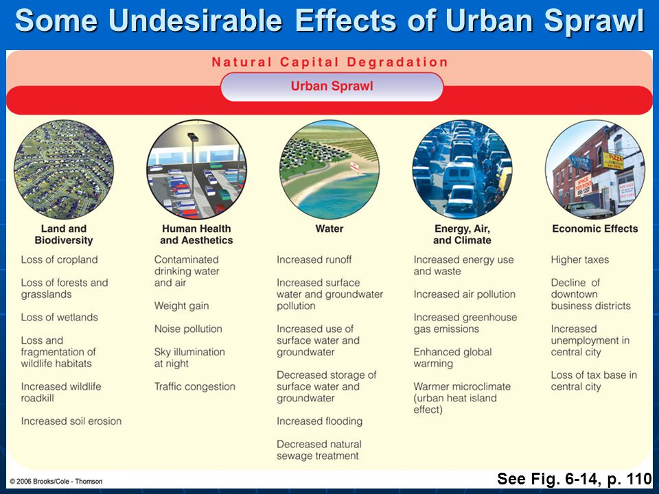 Major Urban Areas of the US Fig. 6-12, p. 109