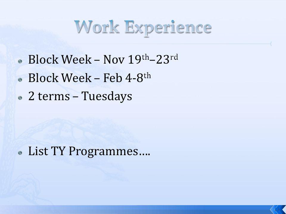 Block Week – Nov 19 th –23 rd Block Week – Feb 4-8 th 2 terms – Tuesdays List TY Programmes…. 13